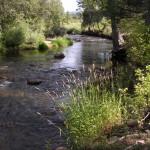 Pecos River 3